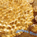 crostata-limone-meringata-150x150 Croquembouche - ricetta della deliziosa piramide di bignè farciti