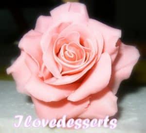 rosa-rosa-300x272 Tutorial rosa - passo passo rosa in pasta modellabile RICETTE BASI