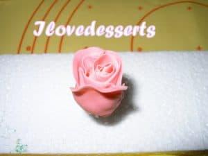 rosa18-300x225 Tutorial rosa - passo passo rosa in pasta modellabile RICETTE BASI