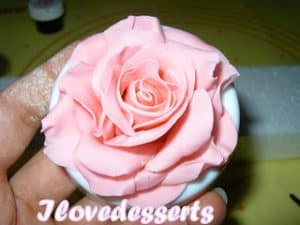 rosa45-300x225 Tutorial rosa - passo passo rosa in pasta modellabile RICETTE BASI