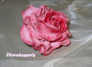 rosa58-300x220 Tutorial rosa - passo passo rosa in pasta modellabile RICETTE BASI
