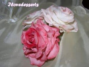 rosa59-300x225 Tutorial rosa - passo passo rosa in pasta modellabile RICETTE BASI